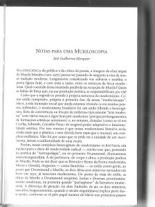 Muriloscopia1