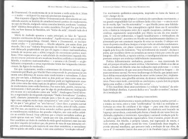 Muriloscopia2