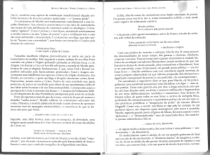 Muriloscopia3